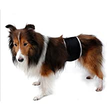 Chinatera Male Boys Dog Belly Band Toilet Training Band Dog Diaper Wrap for Small Medium Pet Dog, Reusable Washable (XS)