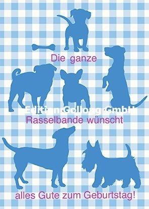 Mein Mops Postkarte Hunde Happy Birthday Bayerisch Amazon De Haustier