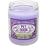 Pet Odor Exterminator Candle Lavender with Chamomile Jar (13 oz)