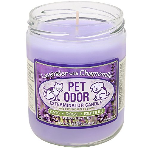 Pet Odor Exterminator Candle Lavender with Chamomile Jar (13 oz) by Specialty Pet Products