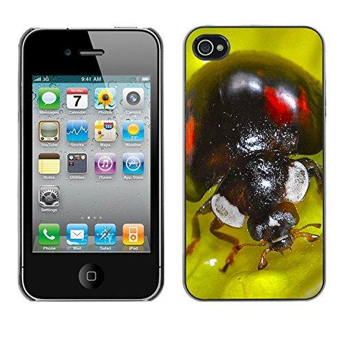 Premio Sottile Slim Cassa Custodia Case Cover Shell // F00009013 insecte // Apple iPhone 4 4S 4G