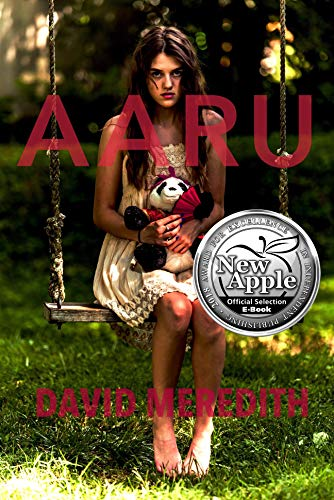 Aaru (The Aaru Cycle Book 1) by [Meredith, David]