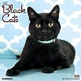 Just Black Cats 2016 Calendar