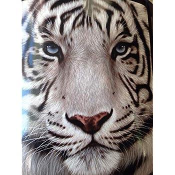 Amazon.com: Dawhud Direct White Tiger Fleece Throw Blanket ...