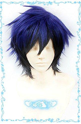 [Lanting Cosplay wig Nisekoi Ichijyo Raku Blue Anime Human Costume Full wigs Synthetic Hair Heat Resistant] (Female Flasher Adult Costumes)