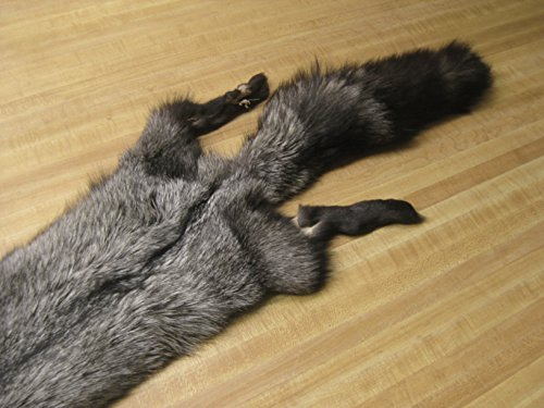 """Silver Fox Pelt Tanned Fur Hide #2 Quality Large Size (45"""" -55"""")"""