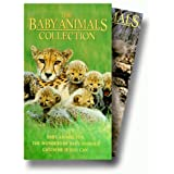 Baby Animals Collection Set