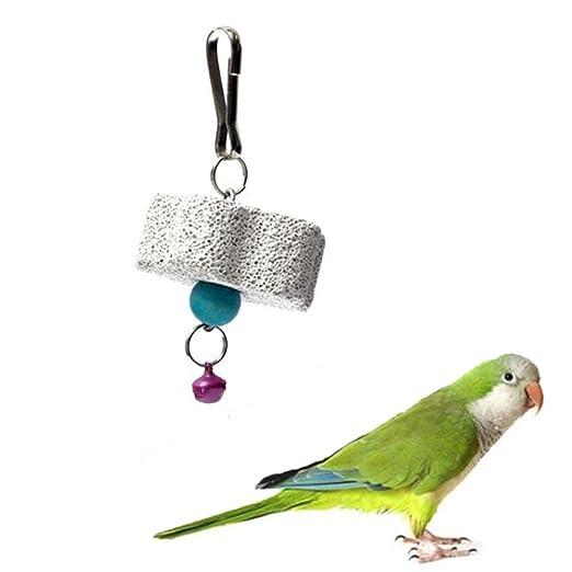 GOOTRADES 2 x Juguetes para Masticar Morder Piedra Molar Tipo Flor para Cotorra/ Lora/ Loro/ Papagayo/ Perico/ Aves/ Pájaro: Amazon.es: Jardín