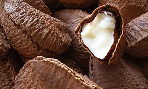 Food to Live Las nueces del Brasil 453 gramos: Amazon.es: Alimentación y bebidas