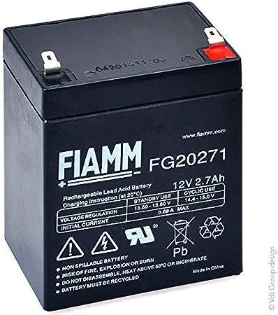 FIAMM - Batería Plomo AGM FG20271 12V 2.7Ah F4.8: Amazon.es: Coche y moto