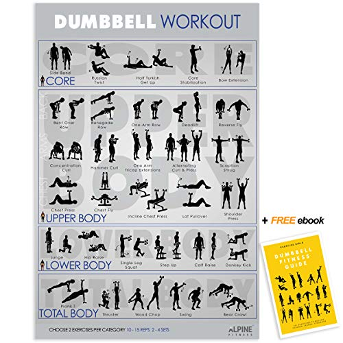 Dumbbell Workout Exercise Poster Chart - Large 30x20 Laminated Gym Planner | Guide to Build Muscle & Strength