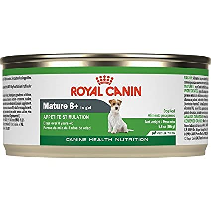Royal Canin Mature Canned Dog Food for 8+ Aged, 5.8-Ounce Cans Net