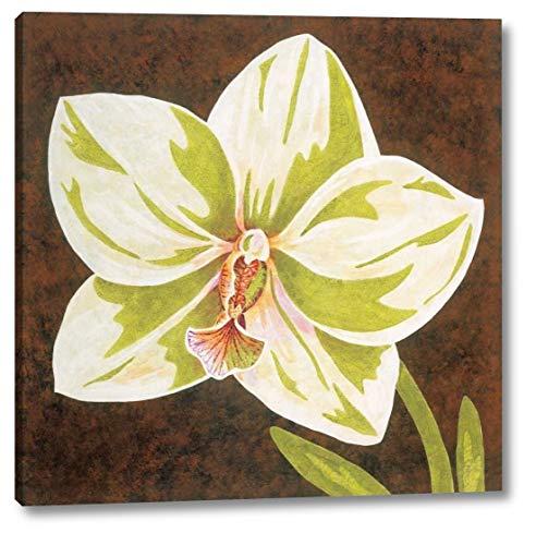 Surabaya Orchid Petites B by Judy Shelby - 19