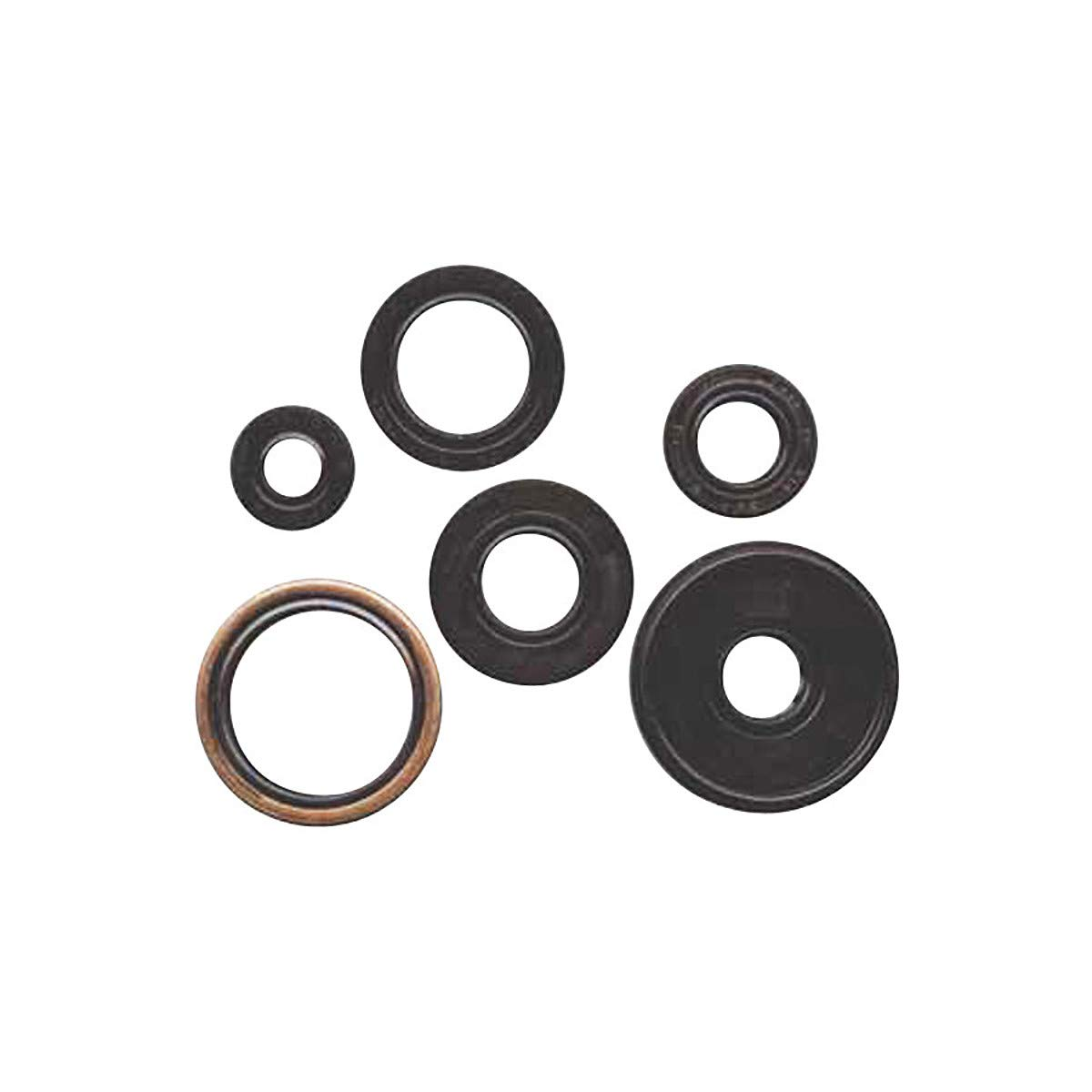 Winderosa 822201 Oil Seal Kit