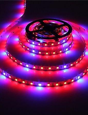 5M ZSQ impermeable Full Spectrum creciente Tira de luz LED para acuarios gases sistemas hidropónicos planta crecen lámpara #1414: Amazon.es: Iluminación