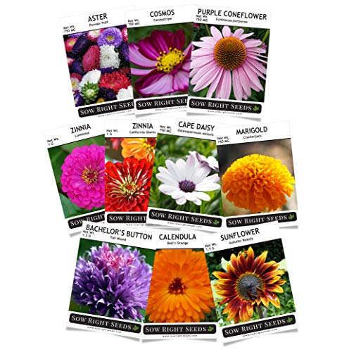 (Sow Right Seeds - Flower Seed Garden Collection - Sunflower, Marigold, Zinnia, Cosmos, Daisy, Calendula, Coneflower, Bachelor Button, and Aster Flowers; Full Instructions for Planting, Gardening Gift)