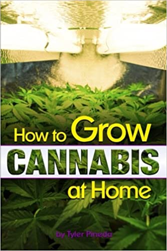 How To Grow Cannabis Indoors: The Beginner's Guide