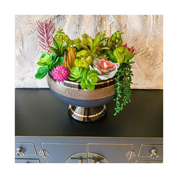 Housenior Artificial Succulent Plants Unpotted : Bulk 24 Pack of Small Fake Succulents – Assorted Loose Faux Realistic Mini Plastic Cactus Stems for Terrarium Greenery Outdoor and Indoor Arrangements