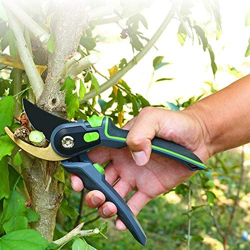 ASDFG Gardening steel pruning shears household fruit trees potted green durable durable labor-saving tools orchard home gardening pruning