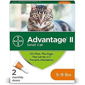 Amazon Com Flea Prevention For Cats 5 9 Lbs 2 Doses