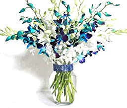 20 Blue and White Orchids with Vase w/ Rhinestone Mesh Ribbon