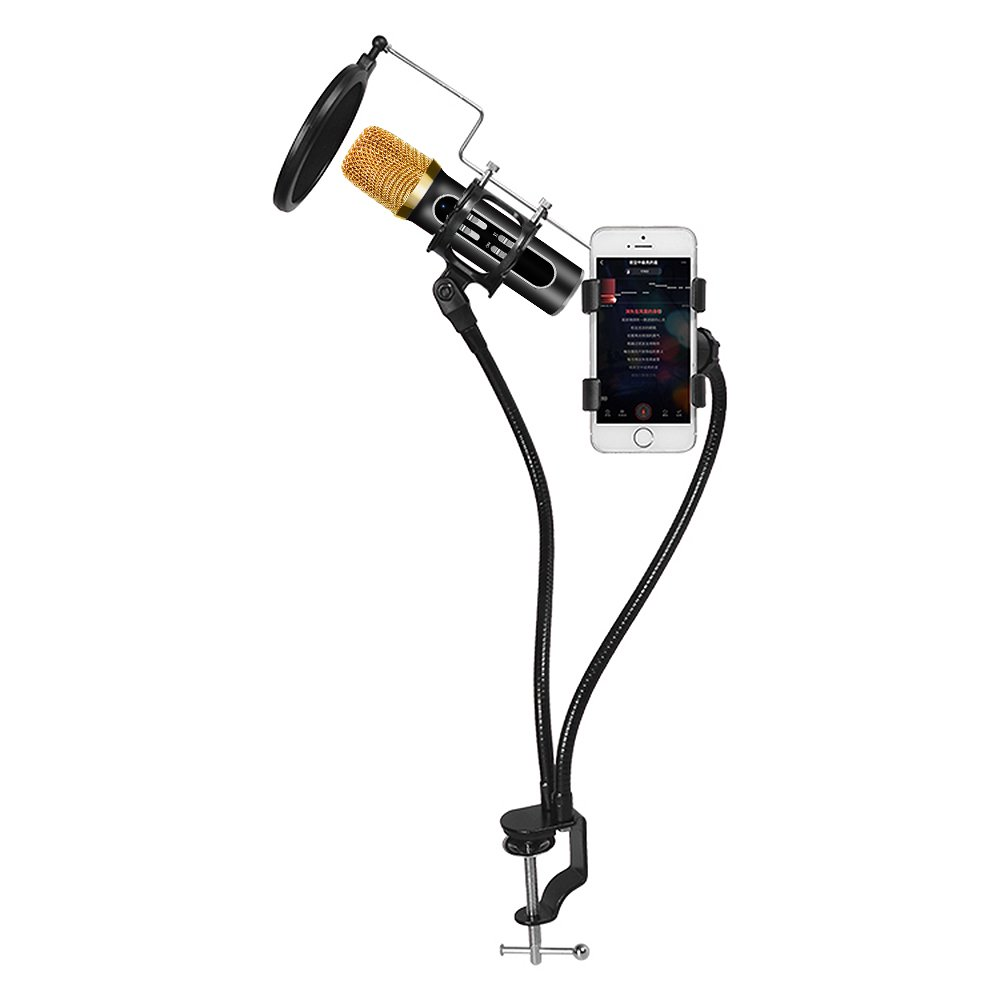 Professional Condenser Microphone Recording with Stand for PC Computer iPhone Phone Android Ipad Podcasting, Online Chatting Mini Microphones by XIAOKOA (K10Sliver)