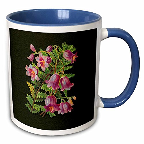 3dRose BLN Victorian Fruits and Flowers Collection - Pretty Pink Bell Shaped Flowers with a Fern Leaf on a Green Background - 15oz Two-Tone Blue Mug ()