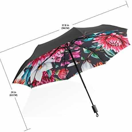 4658c163dfd9 Shopping BAIHUISHOP - Umbrellas - Luggage & Travel Gear - Clothing ...