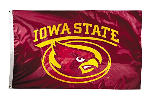 NCAA Iowa State Cyclones 2-Sided Nylon Applique Flag with Grommets, 3' x 5', Maroon (Applique Sided)