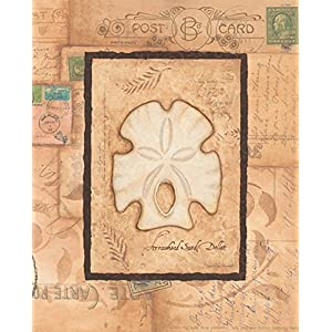 51ER2vj6tZL._SS300_ Best Sand Dollar Wall Art and Sand Dollar Wall Decor For 2020