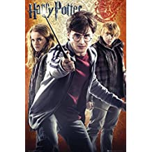 Harry Potter and the Deathly Hallows - Part II - Trio Poster 24 x 36in