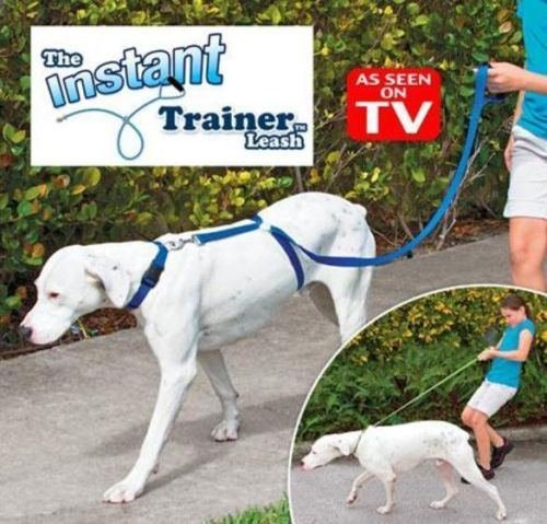 Instant Trainer Trains Pulling Dogwalk product image