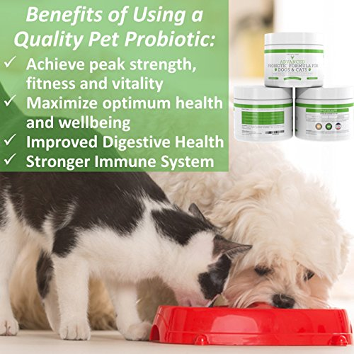 Probiotics-for-Dogs-and-Cats-with-Prebiotic-3-Billion-CFU-7-Strains-Best-Supplement-for-Relief-from-Diarrhea-Skin-Yeast-Infections-Allergies-Gas-Itch-Bad-Breath-Stomach-60-Gram