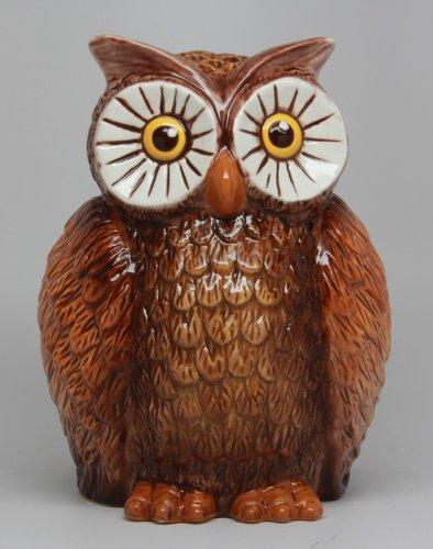 6 Inch Owl Bird Savings Piggy/Coin/Money Bank, Brown and White (Owl Bank)