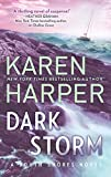 Dark Storm (South Shores Book 6)