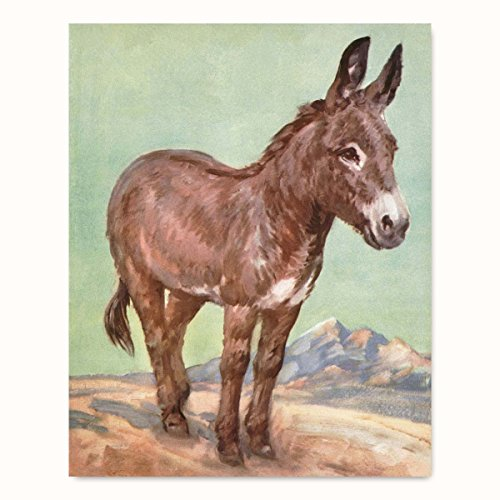 Donkey Art Print (Rustic Wall Decor, Western Ranch Wall Art, Farmyard Burro) - Unframed