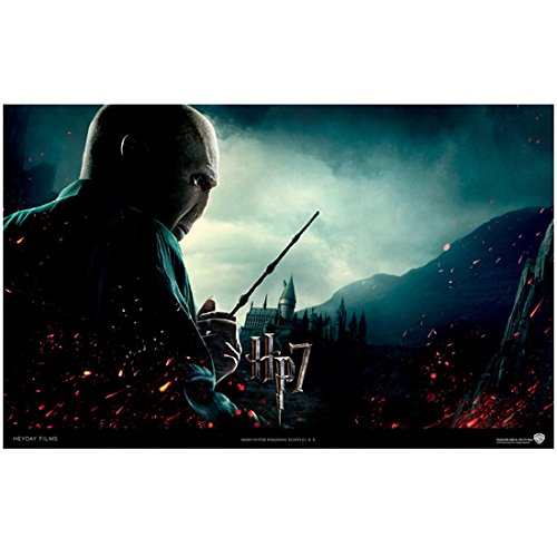Harry Potter Deathly Hallows Part 1 Promo Ralph Fiennes As Lord Voldemort With Wand Wide Angle 8 x 10 Inch Photo