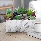 GreenBoxx Ceramic-Marble Artificial Succulent