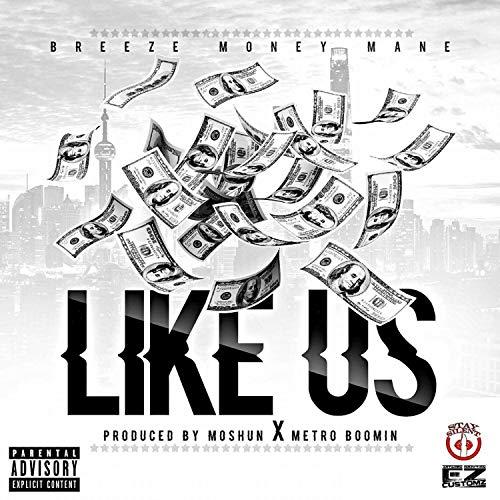 Like Us [Explicit] ()