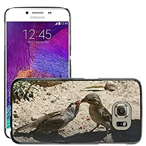 Super Stella Slim PC Hard Case Cover Skin Armor Shell Protection // M00148459 Bird Nature Eat // Samsung Galaxy S6 (Not Fits S6 EDGE)