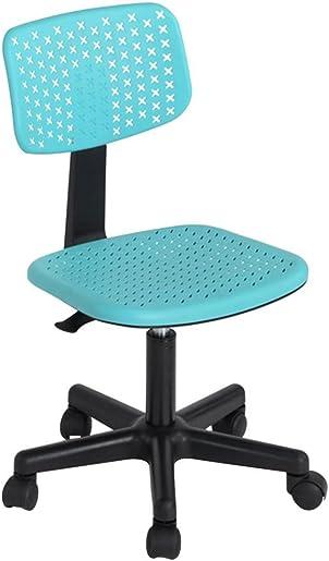 FurnitureR IWC Swivel Home Desk Chairs