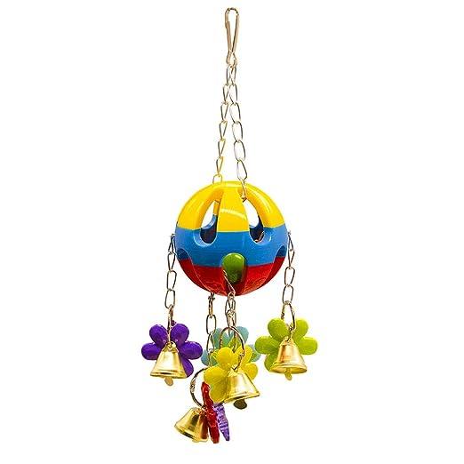 Wiivilik Pájaro Que cuelga Bola Colorida Flor Que mastica el ...