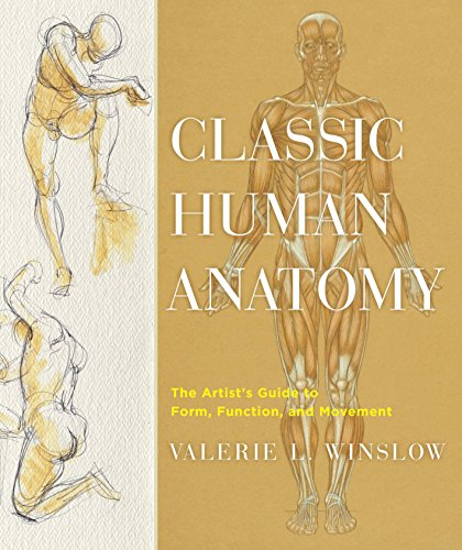 Classic Human Anatomy: The Artist