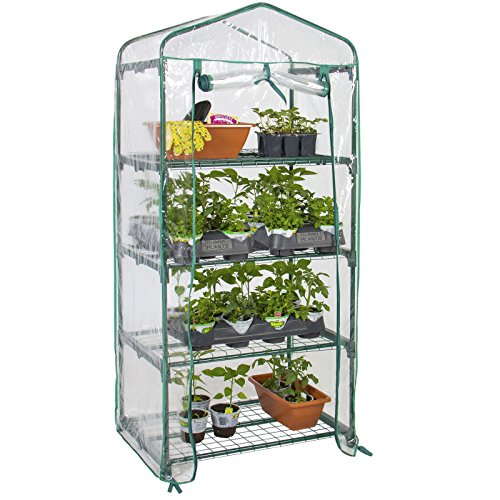 Powder-Coated Steel Bars and a Polyethylene Plastic cover 4 Tier Mini Greenhouse 27
