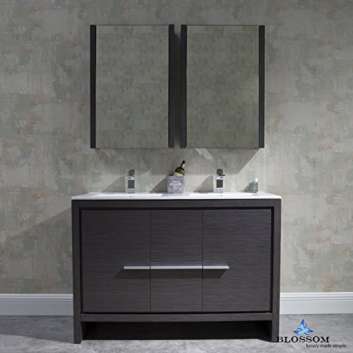 BLOSSOM 014-48-16-DMC Milan 48'' Double Vanity Set with Medicine Cabinets Silver Gray by Blossom
