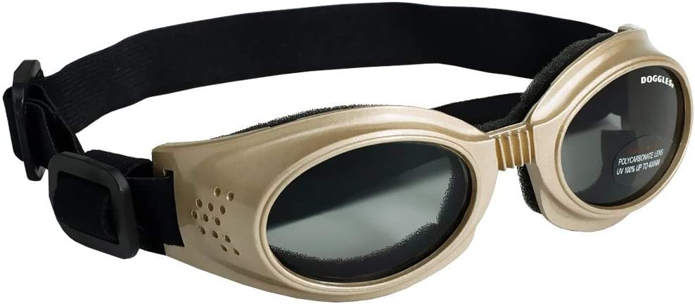 Top 10 Best Dogs Sunglasses Reviews in 2020 2
