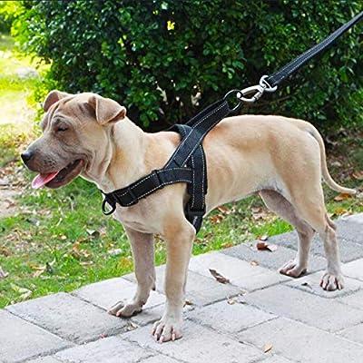 XUEYAN521 Correa de Perro Arnés para Perros Fácil de Poner y ...