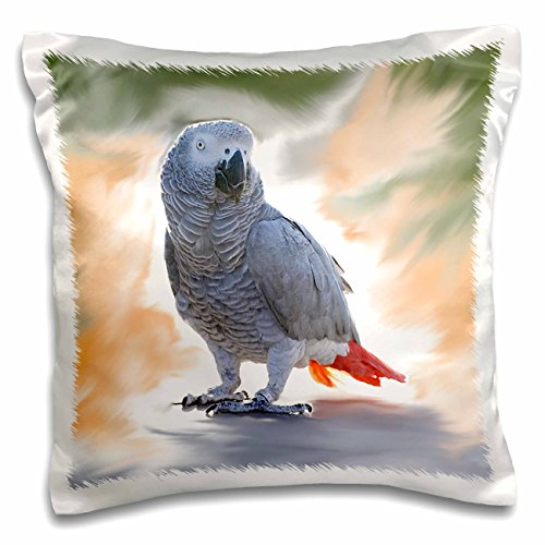 3dRose pc_4030_1 African Grey Parrot-Pillow Case, 16 by 16