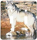 3dRose  lsp_91389_2 North America Usa Minnesota Wolf  Us24 Gje0024 Gavriel Jecan Double Toggle Switch