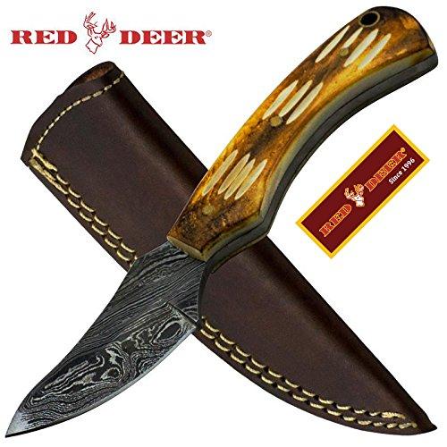 (Red Deer Damascus Full Tang Bright brown Skinny Animal Bone Hunting Knife)